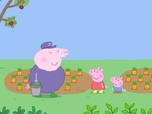 Replay Le nain de jardin - Peppa Pig