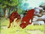 Replay Simba - le roi lion - episode 13 vf - les chiens rouges
