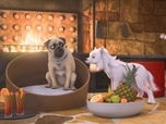 Replay Mike, une vie de chien - S1 E57 : Le faux coupable