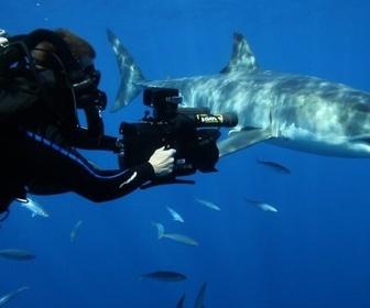 Photographes En Danger replay