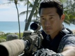 Replay Hawaii 5-0 - Saison 4 épisode 9