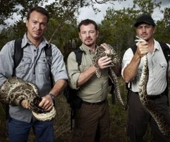 Chasseurs de pythons replay