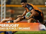 Replay Les essais de Force / Brumbies : SuperRugby