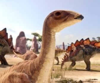 Planète dinosaures replay