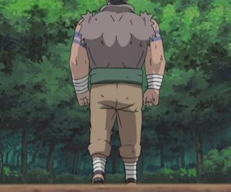 Replay Naruto - Episode 212 - Chacun son chemin !