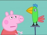Replay Peppa Pig - S1 E4 : Polly le perroquet