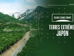 Replay Science grand format - S2 : Terres extrêmes : Japon
