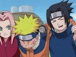 Replay Naruto - Episode 20 - L'examen des Chunin