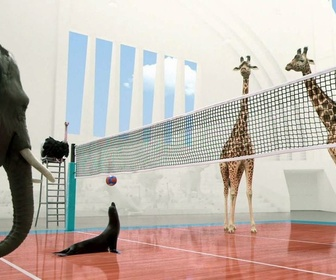 Replay Athleticus - Volley-ball