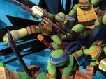 Replay Les Tortues Ninja - S4 E17 : Infectes insectes